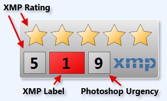 XMP Metadata